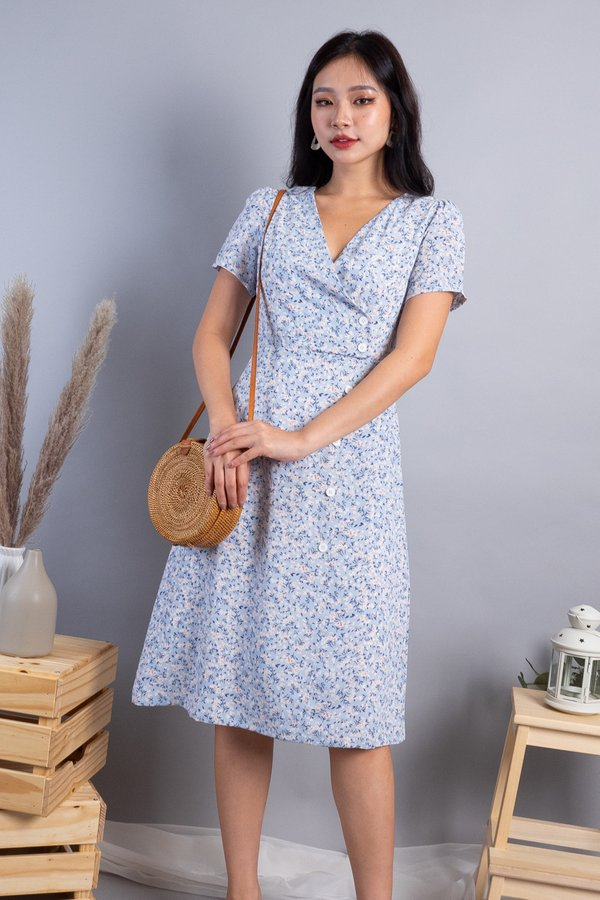 Faryn Side Panel Buttons Dress in Blue Florals